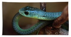 Boomslang Bath Towel