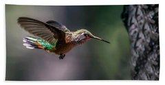 Broad-tailed Hummingbird Hand Towel