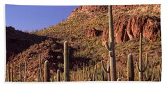 Cacti On A Landscape, Organ Pipe Cactus Hand Towel