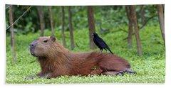 Capybara Hand Towel
