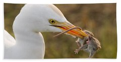 Cattle Egret Hand Towel by Doug Herr