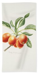 Crab Apples Hand Towel