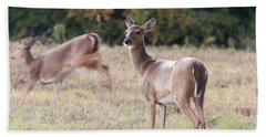 Deer At Paynes Prairie Bath Towel