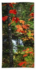 Fall Forest And River Bath Towel