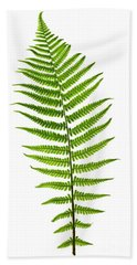 Fern Leaf Bath Towel by Elena Elisseeva