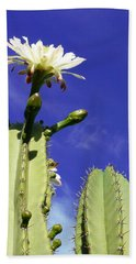 Flowering Cactus 2 Bath Towel by Mariusz Kula