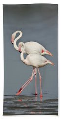 Greater Flamingos Phoenicopterus Roseus Bath Towel