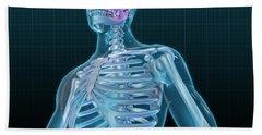 Human Skeleton And Brain, Artwork Hand Towel