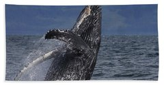 Humpback Whale Breaching Prince William Hand Towel by Hiroya Minakuchi