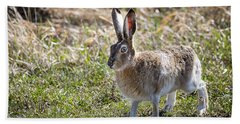 Jackrabbit Bath Towel