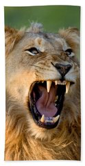 Lion Hand Towel