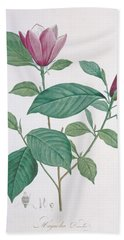 Magnolia Discolor, Engraved By Legrand Bath Towel