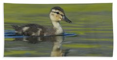 Mallard Duck Swimming In Marsh Pond Hand Towel