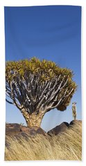 Meerkat In Quiver Tree Grassland Hand Towel by Vincent Grafhorst