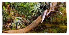Oriental Darter Anhinga Melanogaster Hand Towel