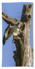 Osprey Pose Hand Towel