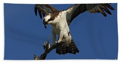 Hand Towel featuring the photograph Osprey With A Fish Photo by Meg Rousher