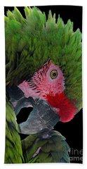 Pensive Parrot Hand Towel
