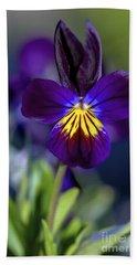Purple Viola Hand Towel