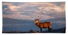 Red Deer Stag Bath Towel