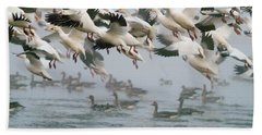 Ross's Goose Hand Towel by Doug Herr