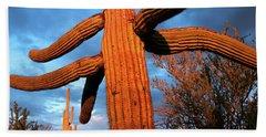 Saguaro Cactus At Saguaro National Bath Towel