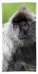 Silvered Leaf Monkey Bath Towel