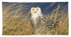 Snowy Owl In The Dunes Bath Towel by John Vose