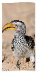 Southern Yellow-billed Hornbill Hand Towel