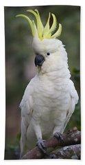 Sulphur-crested Cockatoo Displaying Hand Towel