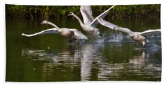 Bath Towel featuring the photograph Swan Take-off by Jeremy Hayden