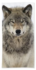 Timber Wolf Portrait Hand Towel by Tony Beck