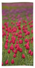 Tulip Beds Forever Hand Towel