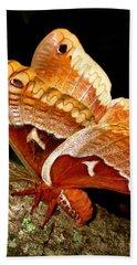 Tuliptree Silkmoth Hand Towel
