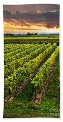 Vineyard At Sunset Hand Towel