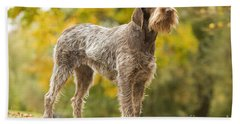 Wire-haired Pointing Griffon Hand Towel