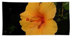 Hibiscus Hand Towel by Ron Davidson
