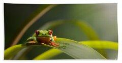 Red Eyed Tree Frog Bath Towel