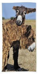 Hand Towel featuring the photograph 120920p028 by Arterra Picture Library