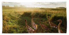 Whooping Crane Reintroduction, Direct Hand Towel