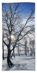 Hand Towel featuring the photograph 130201p341 by Arterra Picture Library