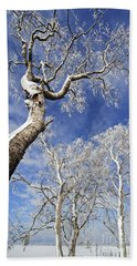Hand Towel featuring the photograph 130201p343 by Arterra Picture Library