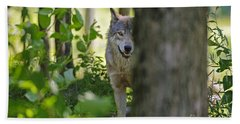 Timber Wolf  Hand Towel