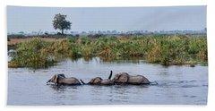 African Elephants Loxodonta Africana Hand Towel