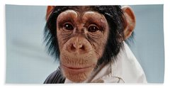 1970s Close-up Face Chimpanzee Looking Hand Towel