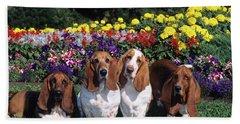 1990s Four Basset Hound Dogs Sitting Bath Towel