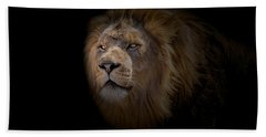 Hand Towel featuring the photograph African Lion by Peter Lakomy