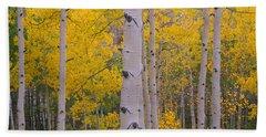 Aspen Trees In A Forest, Telluride, San Bath Towel