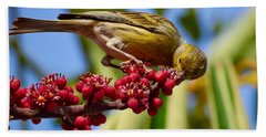 Atlantic Canary With Berries Bath Towel