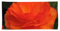 Begonia Named Nonstop Apricot Bath Towel by J McCombie